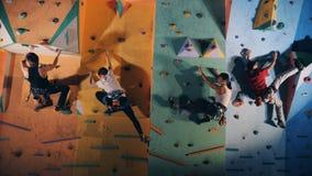 Yrkesmässiga klättrare som inomhus upp utbildar, slut arkivfilmer