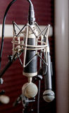 Yrkesmässiga mikrofoner royaltyfri fotografi