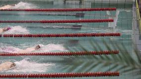 Yrkesmässigt bad i simbassängen, vändryggsim stock video