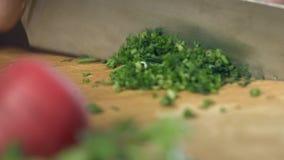 Yrkesmässigt dillklipp med en kniv för kock` s på en skärbräda stock video