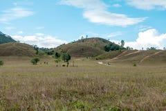 Łysa góra, trawy góra, trawy góra dzwoni Khao Hua Obraz Royalty Free