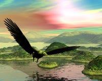 Łysego Eagle zmierzch Zdjęcie Royalty Free