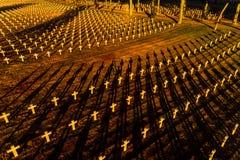 Ysselsteyn German military war cemetery royalty free stock photos