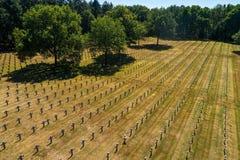 Ysselsteyn German military war cemetery stock photo