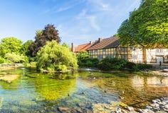 Ystad Monastery Pond Royalty Free Stock Image