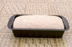 Żyta chlebowy ciasto w wypiekowej foremce Obraz Royalty Free