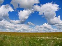 Żyta pole, niebieskie niebo i cumulus chmury, Fotografia Stock