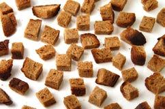 żyto chlebowy Fotografia Stock