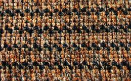 Yttersida av den bruna silkespapperlisten Royaltyfri Foto