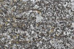 Yttersida av den gamla stenen Royaltyfri Fotografi
