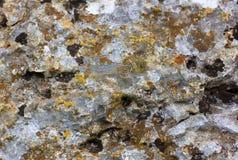 Yttersida av den gamla stenen med mossa för gul gräsplan Royaltyfri Bild