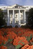 Yttersida av den Greenbrier klubbhuset och semesterorten med blommor i förgrund, vit Sulphurvår, WV Royaltyfri Fotografi