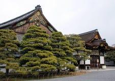 Yttersida av den Ninomaru slotten av den Nijo slotten Royaltyfria Foton