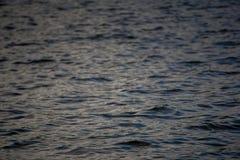 Yttersida av en sjö Royaltyfri Fotografi