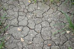 Yttersida av en torr knäcka förtorkad jord för grunge för textural bakgrund Royaltyfri Foto