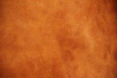 Yttersida av läder Royaltyfri Fotografi