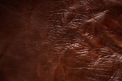 Yttersida av läder Royaltyfria Foton