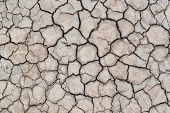 Yttersida av sprucken jord för texturbakgrund, torkad lera Royaltyfria Foton