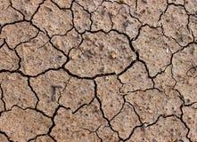 Yttersida av torr jord på sommar Royaltyfria Bilder