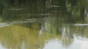 Yttersida för flodvatten arkivfilmer