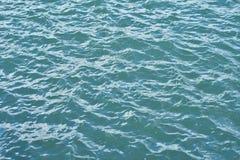 Yttersida för krabbt hav Arkivfoton