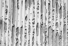 yttersida för metallmålarfärgskalning Arkivfoto