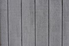 Yttersida för textur för träkornpanel royaltyfria bilder