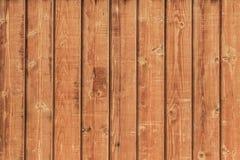 Yttersida för vägg för White Pine plankakoja - detalj Royaltyfria Foton