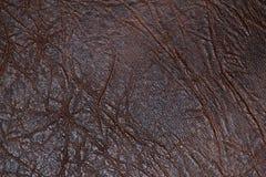 yttersida för konstgjord hud Arkivfoton