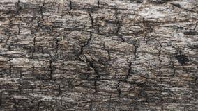 Yttersida som eroderas vid tid, gammalt trä arkivfoto
