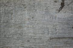 Yttersida som eroderas vid tid, gammalt trä Royaltyfri Fotografi