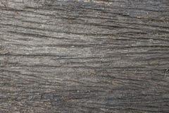 Yttersida som eroderas vid tid, gammalt trä royaltyfri foto