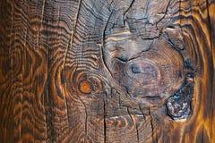 Yttersidamodell på trä Arkivbilder