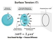 Yttersidaspänning vektor illustrationer