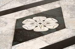 Yttre marmorgolv av Siena Cathedral, Italien Arkivfoton