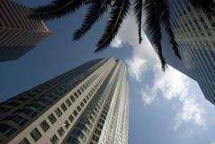 Yttre sikt för låg vinkel av i stadens centrum Los Angeles skyskrapor, Kalifornien Arkivfoton