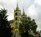 Yttre sikt till St Peter och Paul Cathedral, Paramaribo, Surinam royaltyfria foton