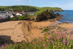 Yttre strandhoppliten vik södra Devon England UK nära Kingsbridge och Thurlstone Arkivfoto