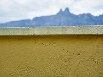 Yttre vägg med en grupp av myror som kör längs den royaltyfria foton