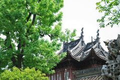 Yu庭院景观 库存图片