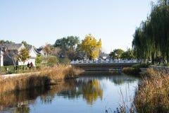 亚洲人中国,北京, Yu他破坏公园,秋天风景 库存图片