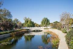 亚洲人中国,北京, Yu他破坏公园,秋天风景 库存照片
