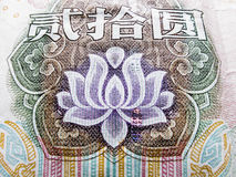 Yuan. Extreme closeup of lotus in a Chinese Yuan banknote royalty free stock photo