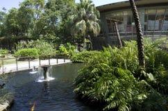 Yuan Sen Applied Botanical Garden Taitung Royalty-vrije Stock Foto's