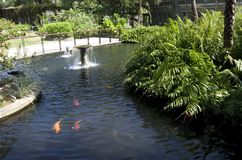 Yuan Sen Applied Botanical Garden Taitung Royalty-vrije Stock Foto