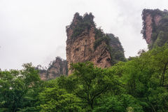 Yuanjiajie national forest park. Yuanjiajie national park scenic views. famous tall grotesque rocks that became an inspiration for avatar. Zhangjiajie, China royalty free stock photos