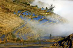 Yuanjiang that promise terraces. Eastphoto, tukuchina,  Yuanjiang that promise terraces Royalty Free Stock Image