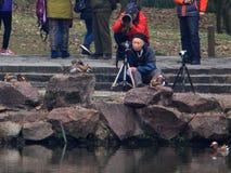 Yuanyang зимы в Ханчжоу, и получает вместе с концом людей, беспечальным стоковые фотографии rf