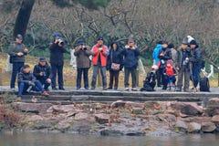 Yuanyang зимы в Ханчжоу, и получает вместе с концом людей, беспечальным стоковые изображения
