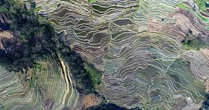 Yuanyang Hani Rice Terraces in southeastern Yunnan province, China stock video footage